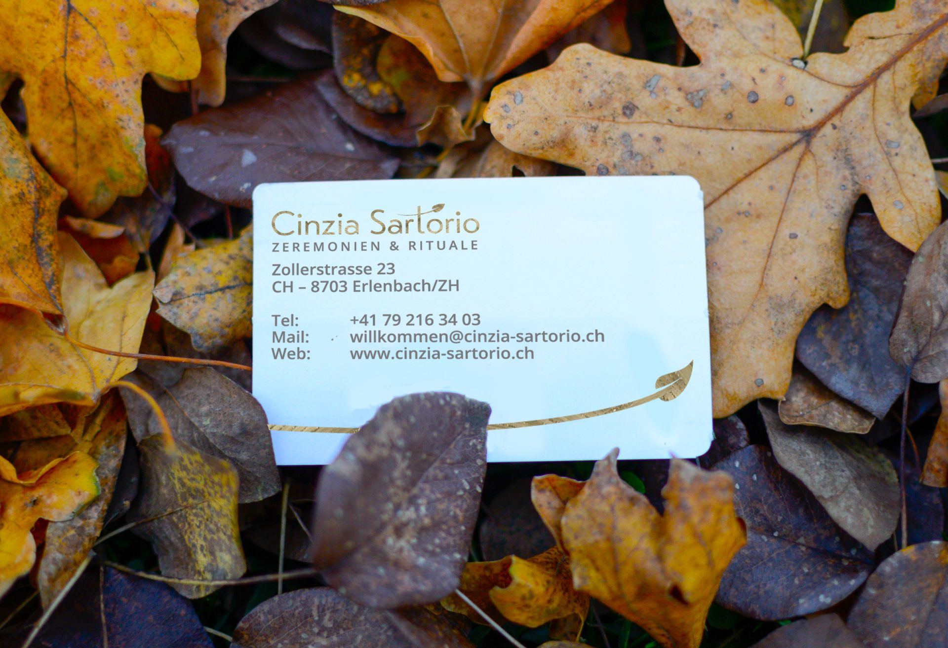 Autumn-contact-card-6544.jpg
